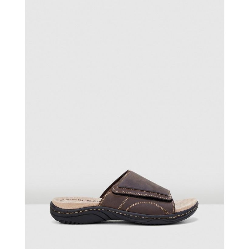 Archie Brown by Hush Puppies