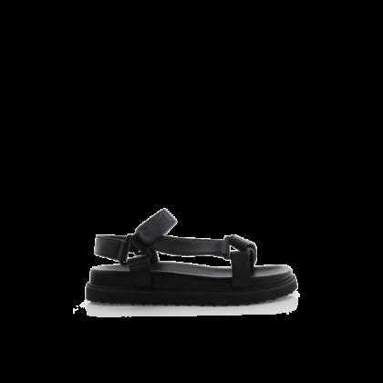 Zak - Black by Billini Shoes