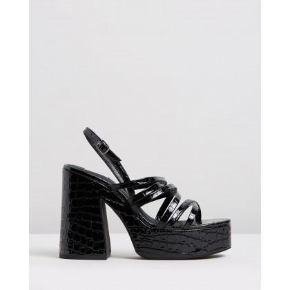 Stratton Heels Black Croc by Dazie