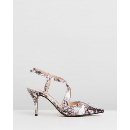 Enigma Cross Courts Snake by Dorothy Perkins