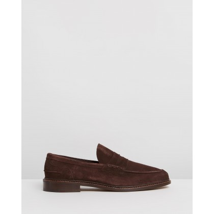 Adam Coffee Castorino Suede by Trickers