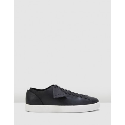 Arlo Lace Black Leather by Clarks
