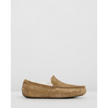 Ascot - Men's Chestnut by Ugg