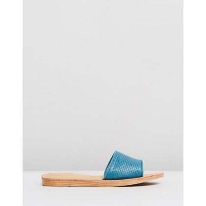 Bamboo Teal by Roc Boots Australia