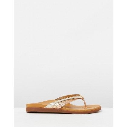 Catalina Toe Post Sandals Mixed Metallic by Vionic