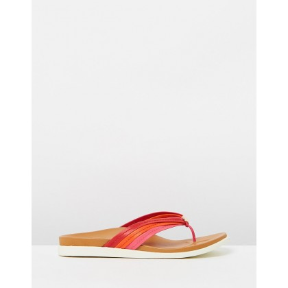 Catalina Toe Post Sandals Pink & Red by Vionic
