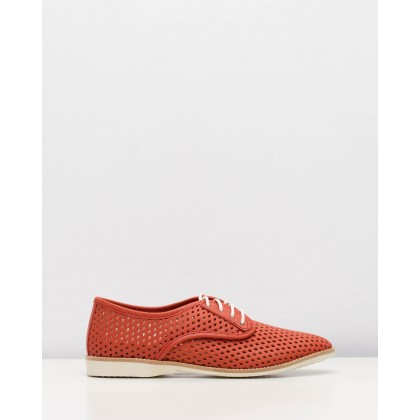 Derby Punch Shoes Red by Rollie