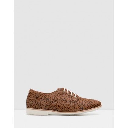 Derby Shoes Brown Leopard by Rollie