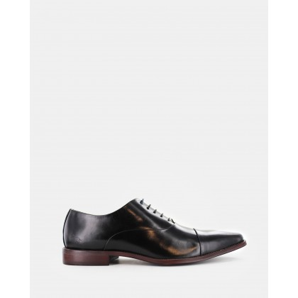 Dune Dress Shoes Black by Wild Rhino