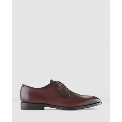 Fenwick Lace Ups Bordo by Aquila