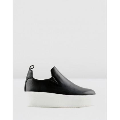 Finley Sneakers Black by Sol Sana