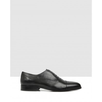 Hansfield Lace Up Parma by Brando