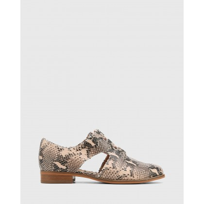 Harrie Snake Print Leather Cut Out Brogues Pink by Wittner