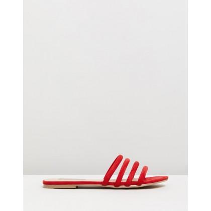 Iliana Red Suede by Billini