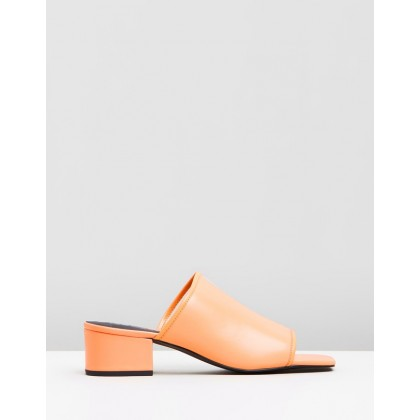 Inverse Mules Orange Sherbet by Sol Sana