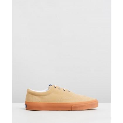 John Suede Sneakers Beige, Camel & Gum by Sebago