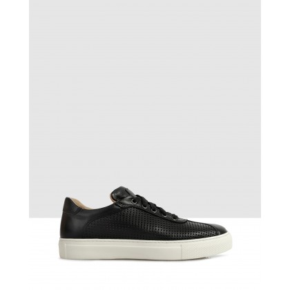 Kacie Sneakers Black by S By Sempre Di