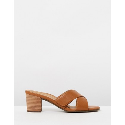 Lorne Slide Sandals Saddle by Vionic