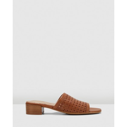 Maui Tan by Hush Puppies