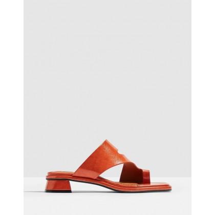 Noah Vegan Toe-Loop Sandals Orange by Topshop