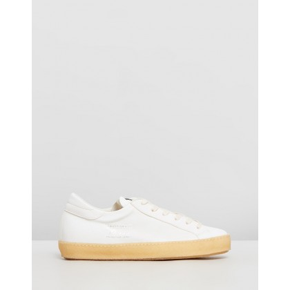 Paris Vintage Sneakers West Blanc by Philippe Model
