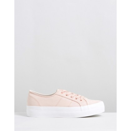 Philadelphia Sneakers Blush Microsuede by Dazie