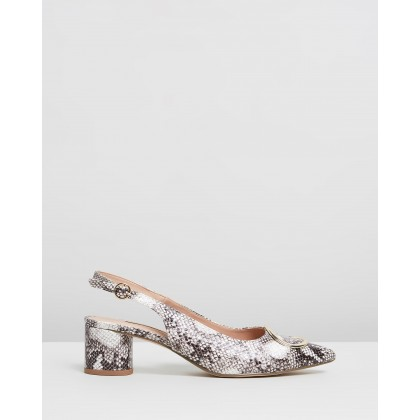 Snake Emma Court Shoes Animal by Dorothy Perkins