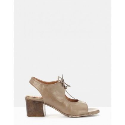 Steed Taupe by Eos