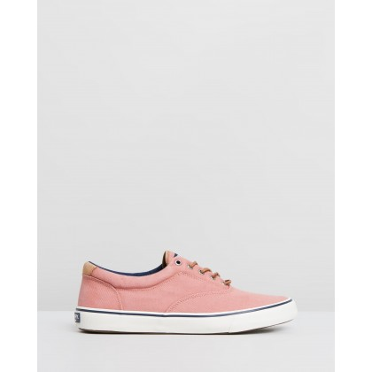 Striper II CVO Oxford Shirt Sneakers Nantucket Red by Sperry