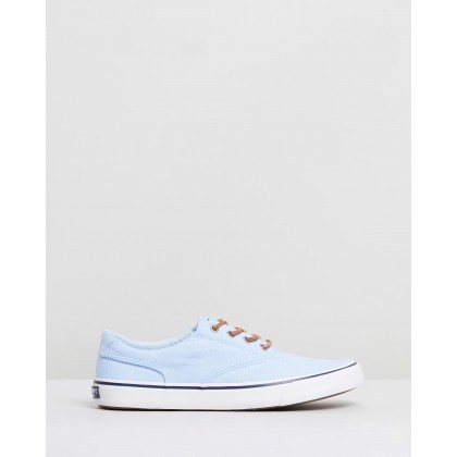 Striper II CVO Oxford Shirt Sneakers Light Blue by Sperry