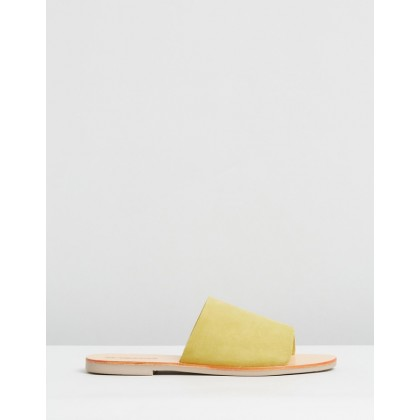 Teresa Slides Lemon Suede by Sol Sana