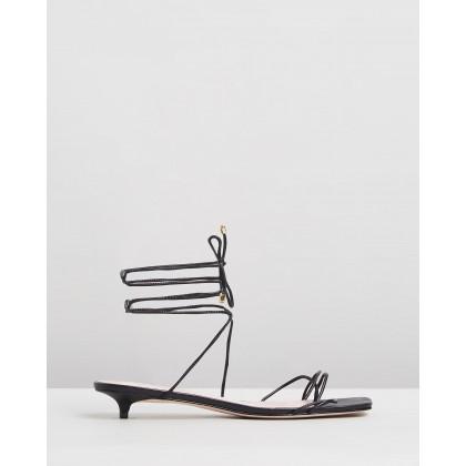 Tie-Up Square Toe Sandals Black by Schutz