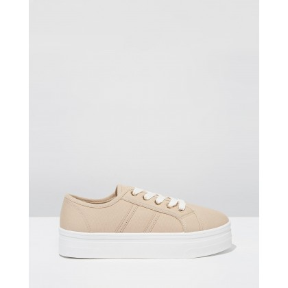 Willow Platform Sneakers Light Taupe Canvas by Rubi