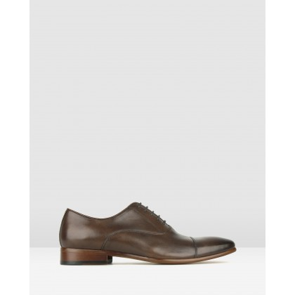 Zap Leather Oxford Dress Shoes Chocolate by Zu