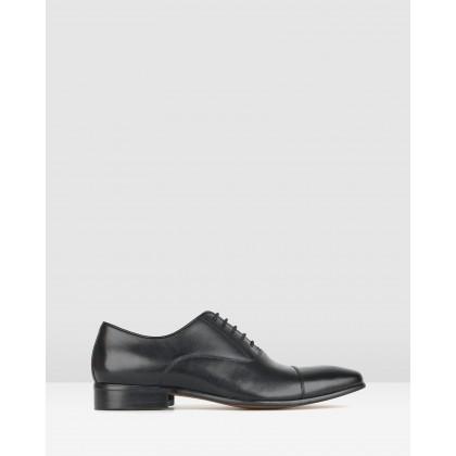 Zap Leather Oxford Dress Shoes Black by Zu