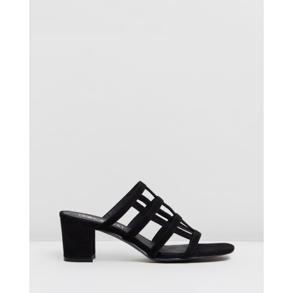 Spencer Mules Black Suede by Sol Sana