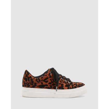 Candy Lace-Up Trainers Leopard by Topshop