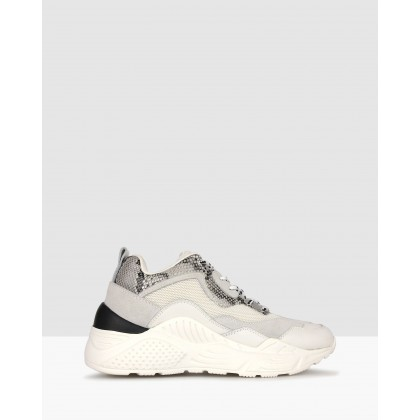 Scorch Leather Lifestyle Sneakers White Multi by Zu